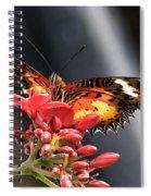 Self Propelled Flower - 2 Spiral Notebook