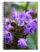 Selfheal Up Close Spiral Notebook