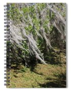 Seminole Wind Spiral Notebook