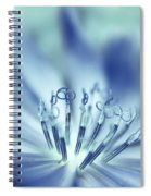 Senses Spiral Notebook