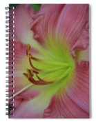 Sensual Pink Lilly Spiral Notebook