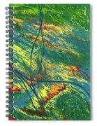 Sentinel Universe Spiral Notebook