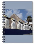 Sentry Pelicans Spiral Notebook