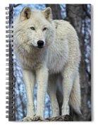 Sentry Wolf Spiral Notebook
