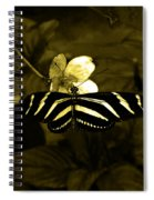 Sepia Butterfly And Flower Spiral Notebook