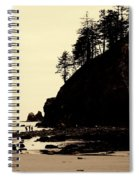 Sepia High Contrast Rialto Beach Spiral Notebook