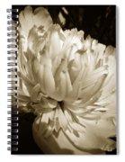 Sepia Peony Flower Art Spiral Notebook