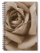 Sepia Rose Abstract Spiral Notebook