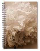 Sepia Series - Peony Spiral Notebook