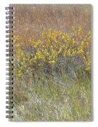 September's Shine Spiral Notebook