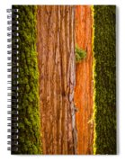Sequoia Abstract Spiral Notebook