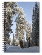 Sequoia National Park 4 Spiral Notebook