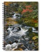 Serene Mountain Stream Spiral Notebook