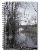 Serene Swampy River Spiral Notebook
