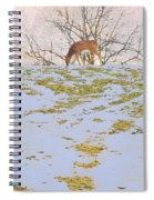 Serenity In The Spring Snow Spiral Notebook