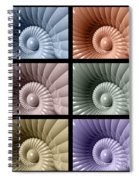 Series Of Sea Shells Spiral Notebook