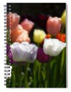 Seriously Colourful Spiral Notebook