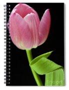 Seriously Pink 2 Spiral Notebook