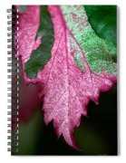 Serrated Spiral Notebook
