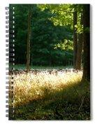 Setting Sunlight Spiral Notebook