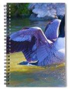 Settling In Spiral Notebook