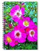 Seven Sisters Rose Variant Spiral Notebook
