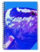 Seymour Spiral Notebook