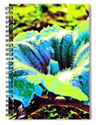 Sf Blossom Spiral Notebook