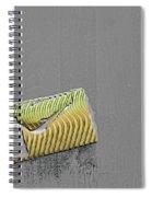 Sfscl00909 Spiral Notebook