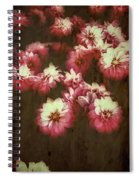 Shabby Chic Floral Design Spiral Notebook