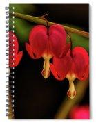 Shades Of Bleeding Hearts Spiral Notebook