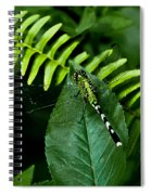 Shades Of Green Spiral Notebook