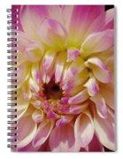 Shades Of Pink Spiral Notebook