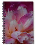 Shades Of Pink Spiral Notebook