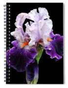 Shades Of Violet Spiral Notebook