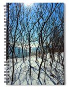 Shadow Branches Spiral Notebook