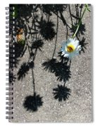 Shadow Daisy Spiral Notebook