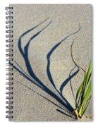 Shadow Grass Spiral Notebook