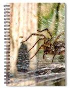 Shadow Maker 2 Spiral Notebook