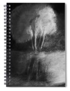 Shadow Of A Tree Spiral Notebook