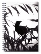 Shadow Of The Crow Spiral Notebook