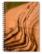 Shadowing Time Spiral Notebook