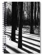 Shadows And Tracks Spiral Notebook