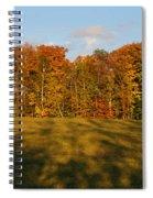 Shadows Bow Spiral Notebook