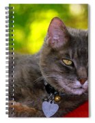 Shadow's Glamour Shot Spiral Notebook