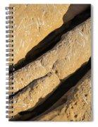 Shadows Of Eons Spiral Notebook