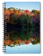 Shadows Of Reflection Spiral Notebook