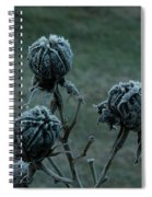 Shadowy Frozen Pods From The Darkside Spiral Notebook