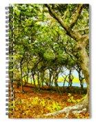 Shady Grove At Wai'anapanapa Spiral Notebook