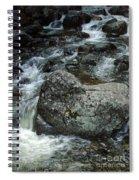 Shady Stream Boulder Spiral Notebook
